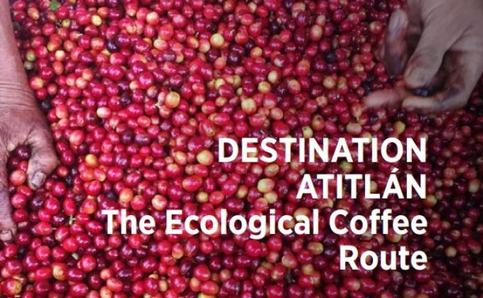 Destination Atitlan : The ecological Coffe Route